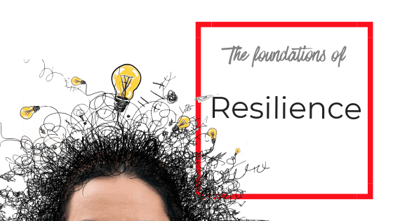 The foundations of resilience